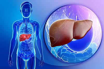 Thetole Liver Cancer Alternative Treatment